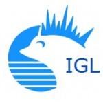 Kostenloser Download – Aufsätze zur Hochbegabung aus dem IGL