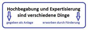 Erläuterung zur Hochbegabung, Institut für Leistungsentwicklung