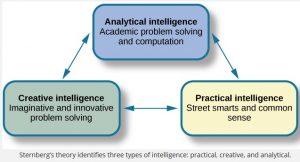 Ein Modell der Intelligenz, das in der neuesten Hochbegabtenförderung wieder an Beachtung gewinnt.